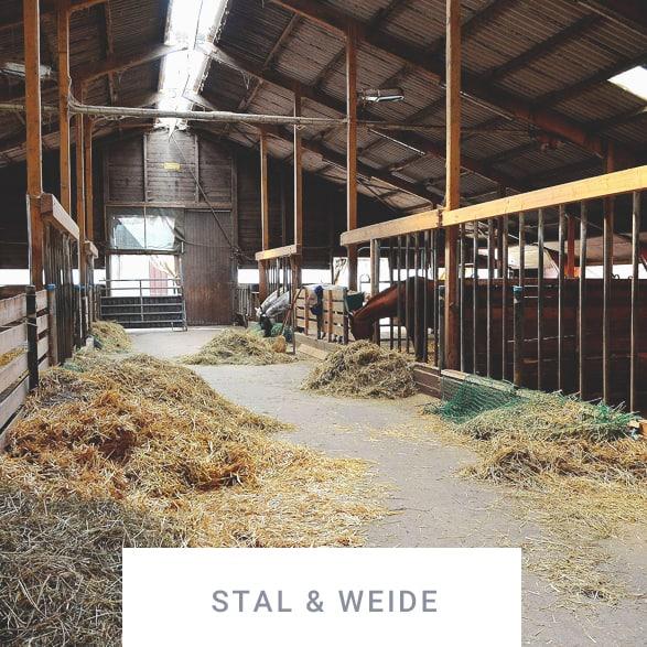 stal & weide